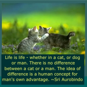 ... difference is a human concept for man's own advantage. - Sri Aurobindo