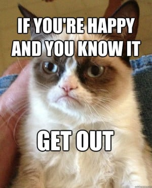 ... in our loves cats on. The Grumpy Cat Quotes . Humorous Grumpy Quotes