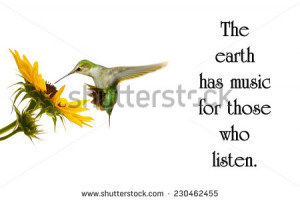 quote on nature by George Santayana with a beautiful hummingbird ...
