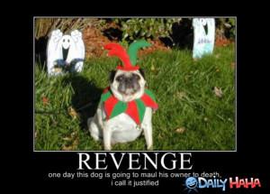 ... s1.static.gotsmile.net/images/2010/10/07/revenge.jpg_1286424222.jpg
