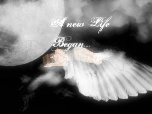... http://www.pics22.com/a-new-life-began-angel-quote/][img] [/img][/url