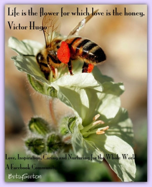 Love and Honey Victor Hugo quote