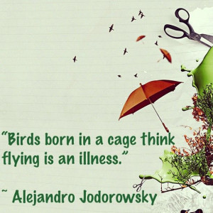 Alejandro Jodorowsky Quote Birds