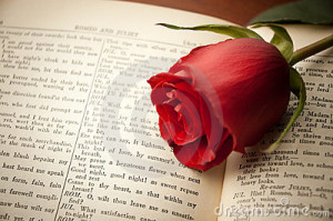 red rose laying on a vintage Shakespeare book open to Romeo and ...