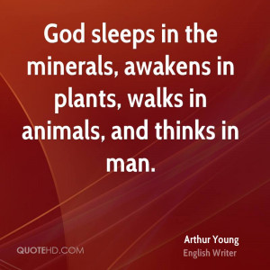 ... the minerals, awakens in plants, walks in animals, and thinks in man