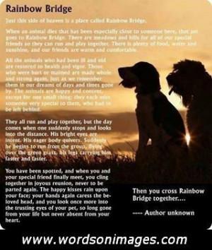 reunited love quotes