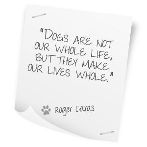 vet quotes - Google Search