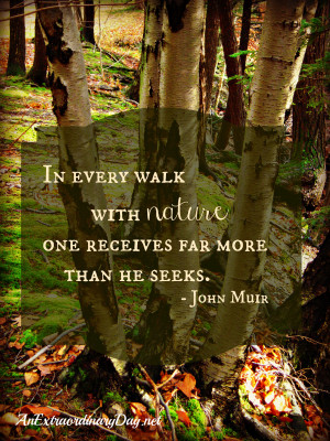 ... quote about Nature – In every walk with nature one receives far more