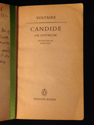 Voltaire Candide Quotes One candide experienced,