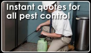 Pest Quotes Quotesgram