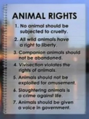 animal rights quotes buddha animal rights quotes buddha animal rights ...