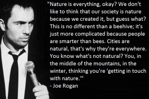 Back > Quotes For > joe rogan on dmt quotes