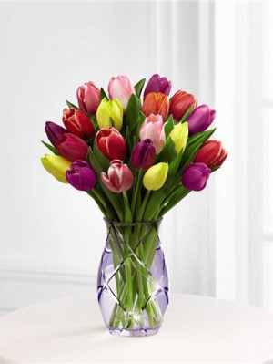 Happy Birthday Quotes Bouquet Tulips Red Tulip And Yellow