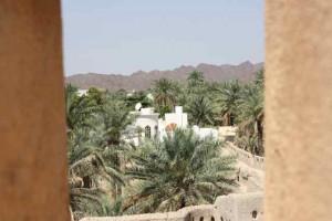 Nizwa desert oasis in Oman