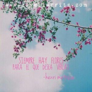 Henri Matisse quote ☆