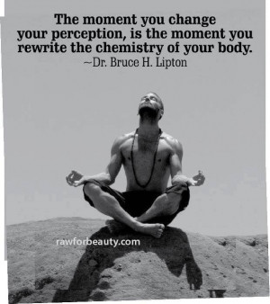 ... moment you rewrite the chemistry of your body. –dr. bruce h. lipton