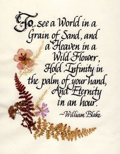 ... in the palm of your hand, And Eternity in an hour.