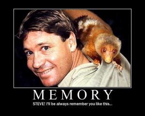 Do you miss steve Irwin ?