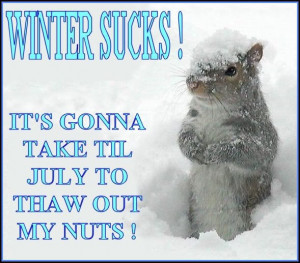 Winter Sucks! It's Gonna Take Til July To Thaw Out My Nuts!