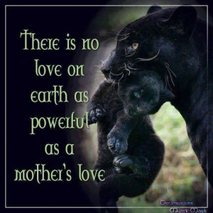 Panther quote