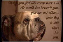Quotes About English Bulldogs