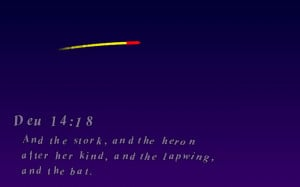 Bible Quotes Fireworks - screenshot