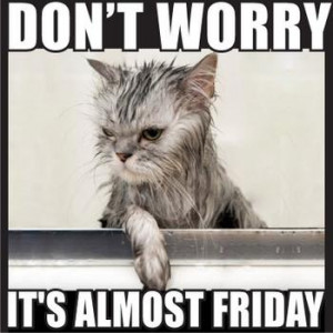 It's almost Friday! :D