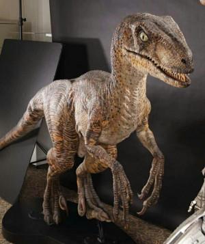 ... Jurassic Parks, Parks Velociraptor, Jp Dinosaurs, Creatures