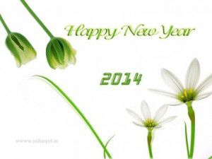 happy-new-year-2014-sms-messages-quotes-wishes
