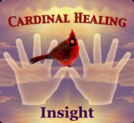 Quotes Birds Cardinals ~ Cardinal Quotes