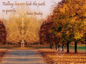 Autumn Quote: Falling leaves hide the path so quietly.... Autumn (5)