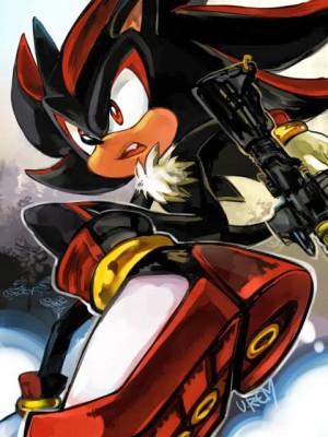 Shadow-shadow-the-hedgehog-30501748-480-640.jpg