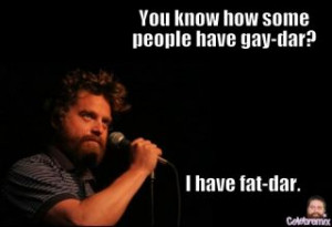 more quotes and sayings about zach galifianakis sometimes those little ...