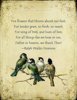 Ralph Waldo Emerson #gratitude #quotes