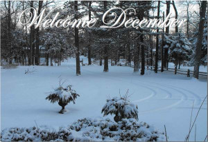 Welcome December Quotes Pictures