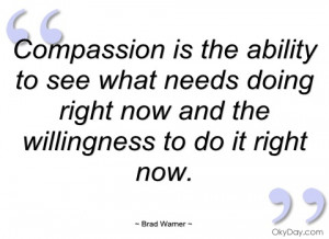 compassion is the ability to see what