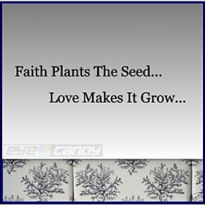 Faith Plants The Seed..Wall Words Sticker Decal Quotes