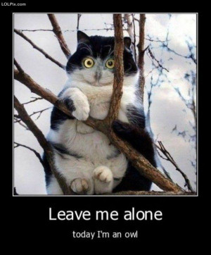 ... Page 10/15 from Funny Pictures 988 (Leave Me Alone) Posted 2/21/2011