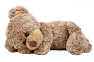 teddy-bear-quotes.jpg