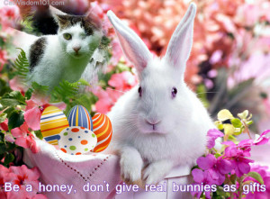 Easter Bunnies Real Quote