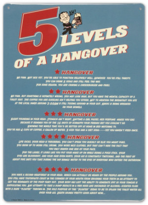 Levels of a Hangover Tin Sign