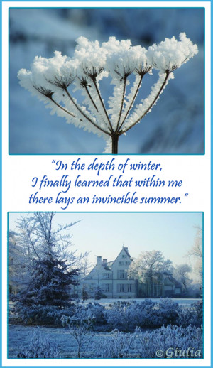 In the depth of the winter, i finally learned that within me lays an ...