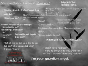 Hush Hush Quotes by Tureis