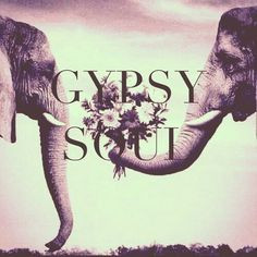 American Hippie Art Quotes ~ Indian Elephant .. Gypsy Soul