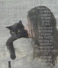 Cat Love Quotes Cat quote of love.