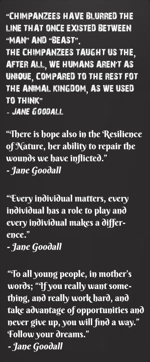 Jane Goodall Quotes About Animals Quotes by jane goodall: