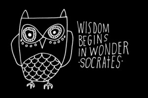 ... , and the practice of reflection upon knowledge is a path to wisdom