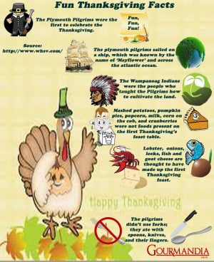 Fun Thanksgiving Facts Infographic