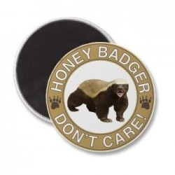 This and all of the other funny honey badger quotes presented on a ...