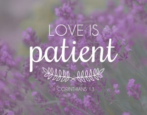 bible verses about love bible quotes about love and patience